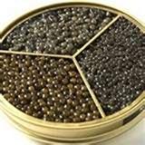 caviar kaspia 2